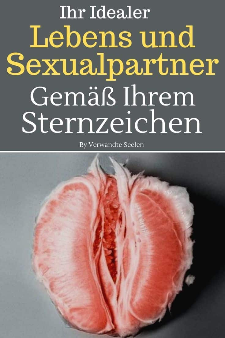 lebenspartner lebenspartner finden sexualpartner