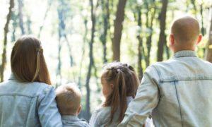 Narzisstische Familienstrukturen: Der narzisstische Familienstammbaum