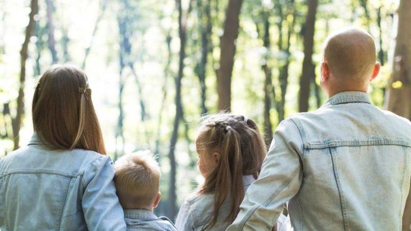 Der narzisstische Familienstammbaum