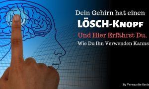 Dein Gehirn hat einen LÖSCH-Knopf und hier erfährst du, wie du ihn verwenden kannst!