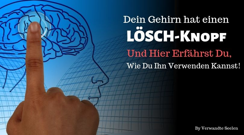 gehirn loschknopf-Löschtaste im Kopf-Die ResetTaste im Gehirn-Gehirn Löschtaste