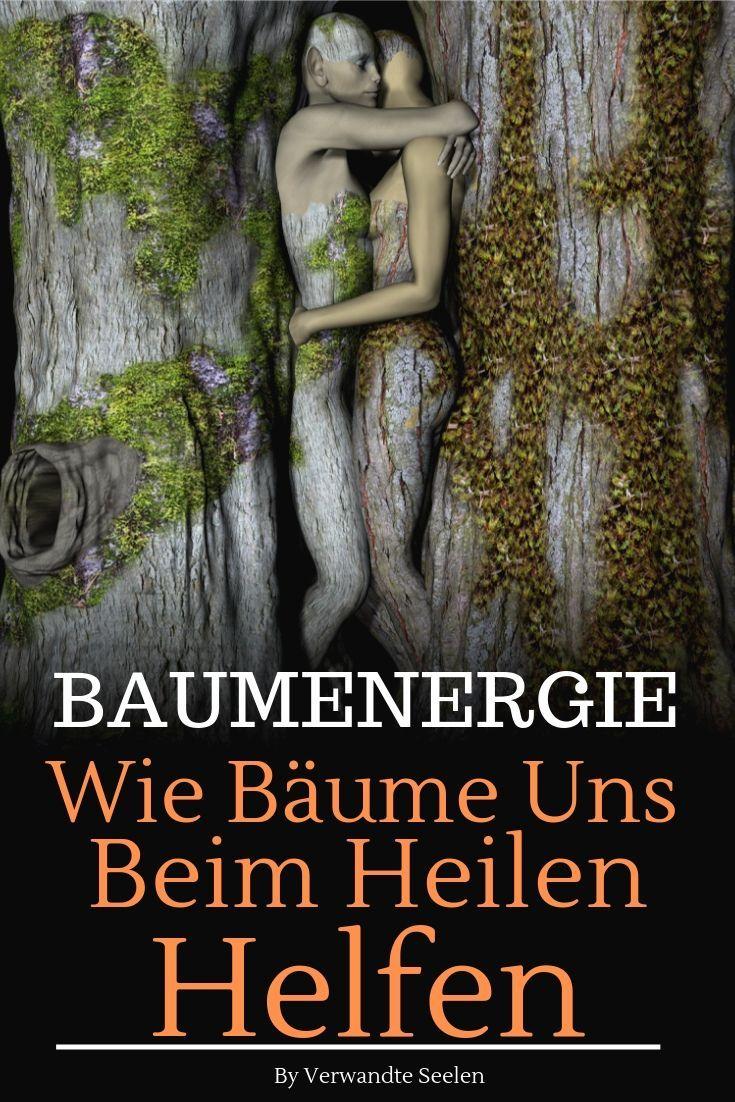 Baumenergie: Wie Bäume uns beim Heilen helfen