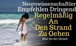 Neurowissenschaftler empfehlen dringend, regelmäßig an den Strand zu gehen. Hier ist der Grund
