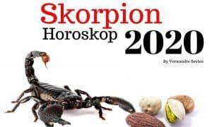 Skorpion Horoskop 2020 - Skorpion 2020 Horoskop Jahresvorhersagen