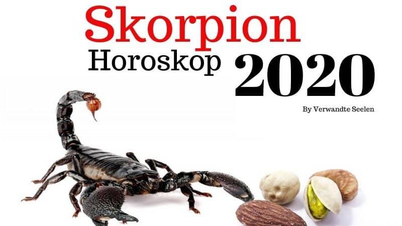 Skorpion sternzeichen-Skorpion horoskop 2020-Skorpion horoskop