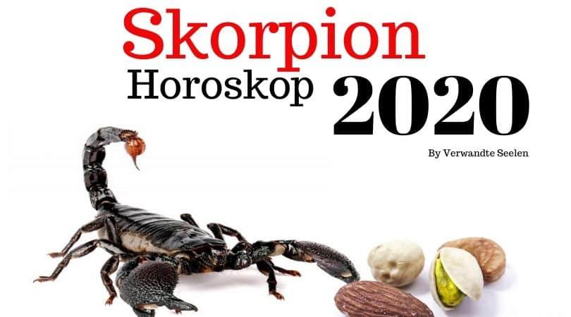 tageshoroskop skorpion morgen